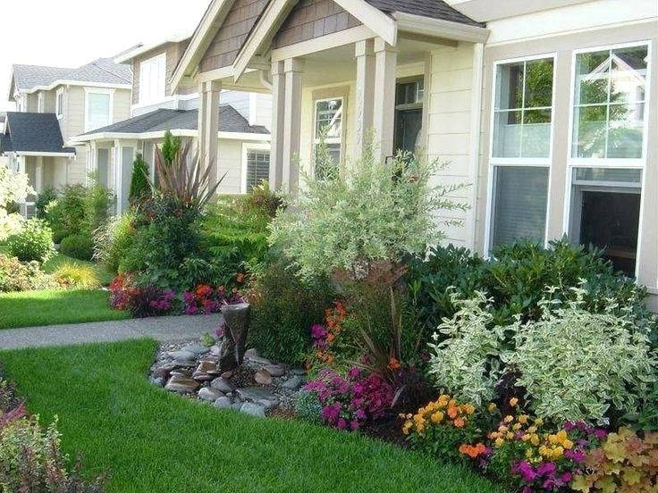 Best Shrubs to Plant in Front of House